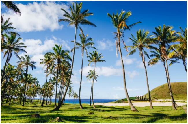 FLIGHTS, ACCOMMODATION AND MOVEMENT ON EASTER ISLAND
